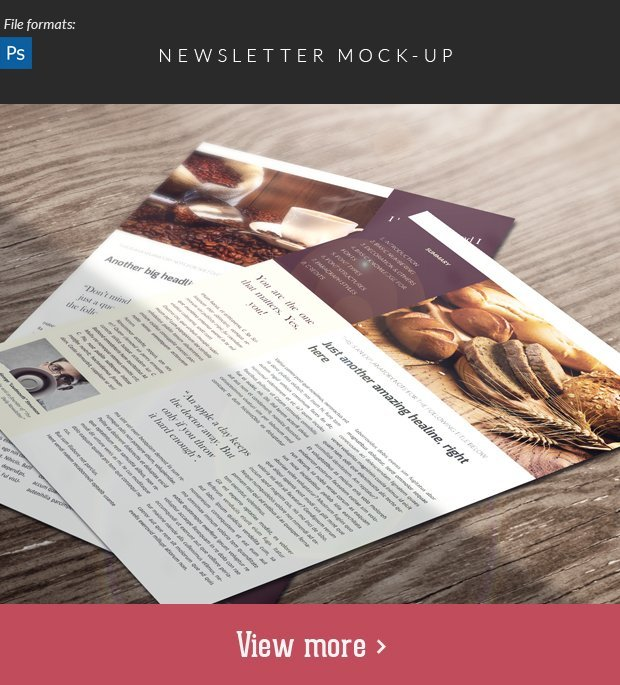 newsletter-mockup-small