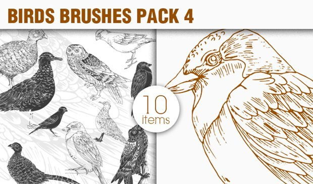 designious-brushes-birds-4-small