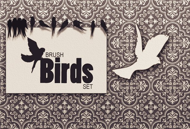 previews-brushes-birds-1