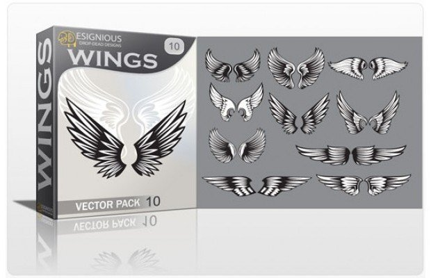wings-10