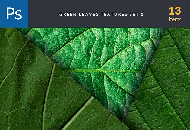 designtnt-textures-green-leaves-set-preview-630x430