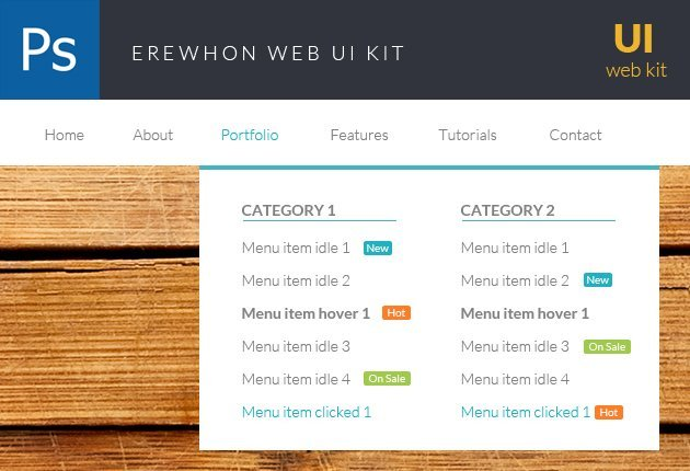 designtnt-web-ERWEHON-small