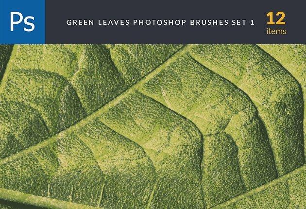designtnt-brushes-green-leaves-1-small