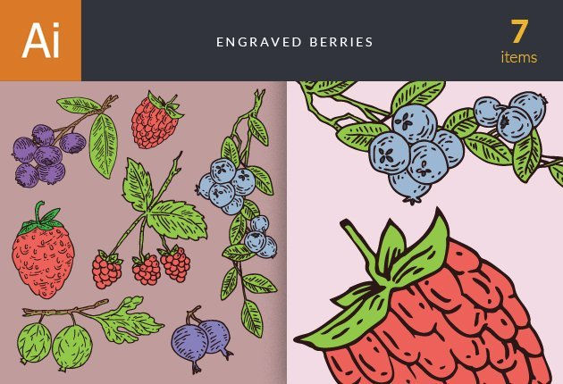 designtnt-vector-engraved-berries-small