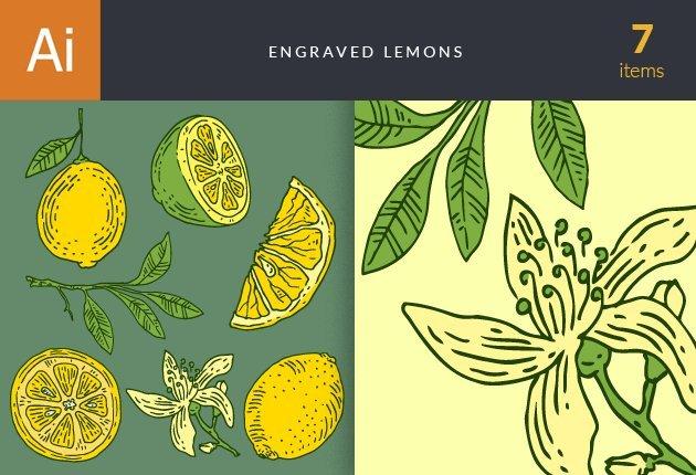 designtnt-vector-engraved-lemons-small