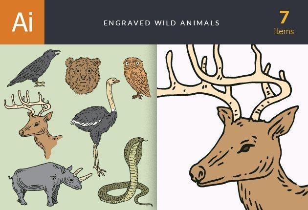 designtnt-vector-engraved-wild-animals-small