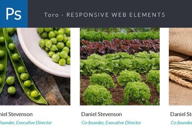 designtnt-web-modi-small