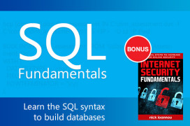 sql-fundamentals-preview