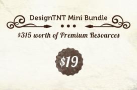 designtnt-mini-bundle-preview
