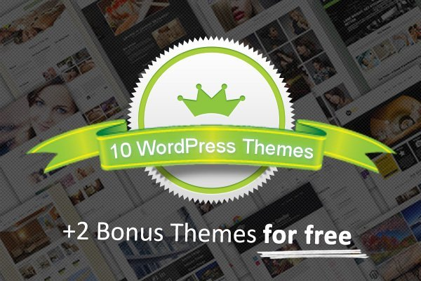 10-professional-wp-themes-7theme-bonus-preview