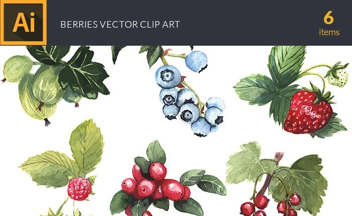 design-tnt-vector-watercolor-berries-small