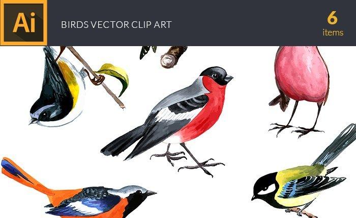 design-tnt-vector-watercolor-birds-small