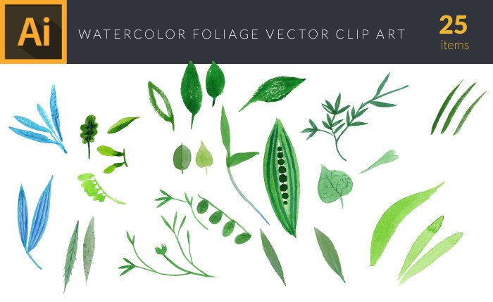 Illustrated flat vector Set