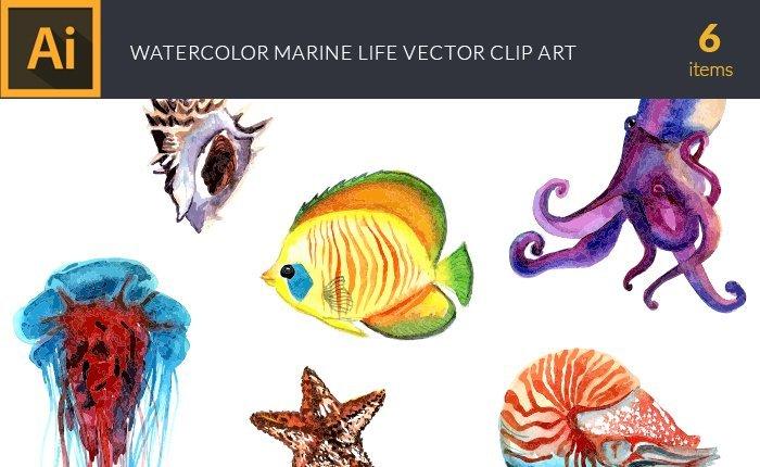 design-tnt-vector-watercolor-marine-life-small