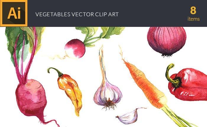 design-tnt-vector-watercolor-vegetables-small