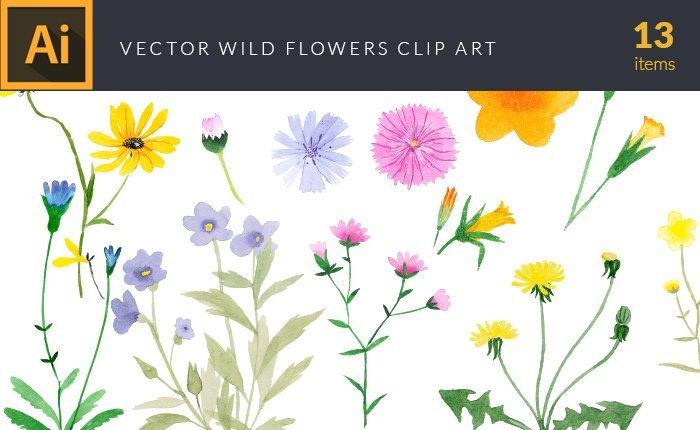 design-tnt-vector-watercolor-wild-flowers-small