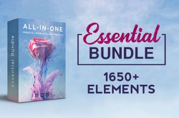 Essential-bundle-banner