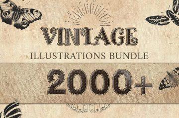 Vintage Design Bundle