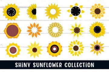 sunflower SVG